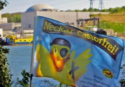 Neckar-Aktionstag